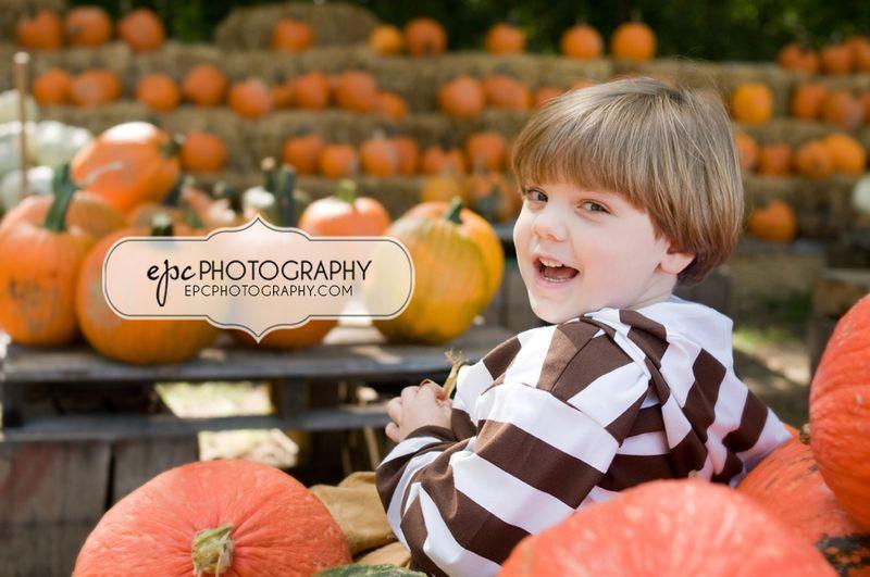 DSC_8541CookPumpkin